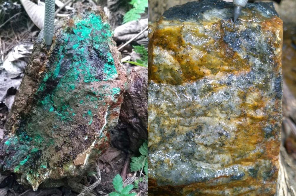 Medinah minerals forum