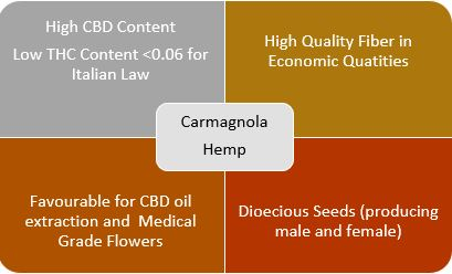 Cannot view this image? Visit: https://orders.newsfilecorp.com/files/6634/50824_hemp.jpg