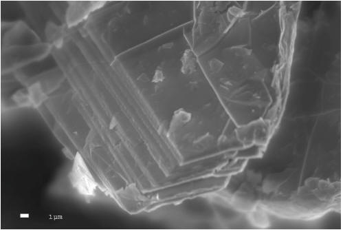 To view an enhanced version of image 1 of the Lomiko Flake Graphite samples under magnification reveal crystalline structure, please visit:  http://orders.newsfilecorp.com/files/1944/16491_lomiko2.jpg