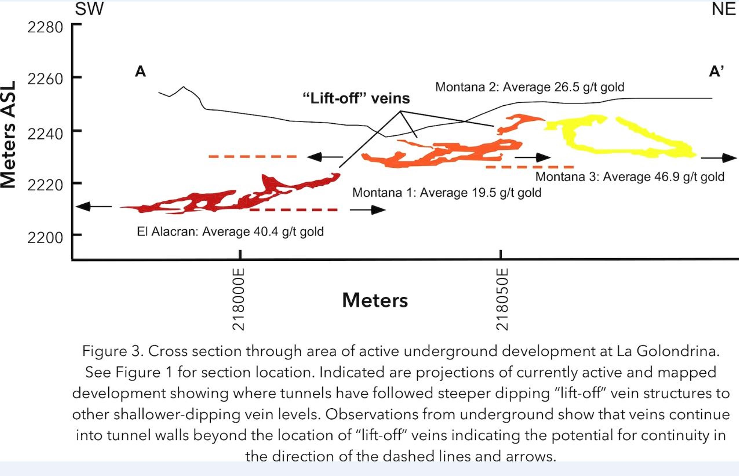 "Figure 3. Cross section through area of active underground development at La Golondrina. See Figure 1 for section location. Indicated are projections of currently active and mapped development showing where tunnels have followed steeper dipping ""lift-off"" vein structures to other shallower-dipping vein levels. Observations from underground show that veins continue into tunnel walls beyond the location of ""lift-off"" veins indicating the potential for continuity in the direction of the dashed lines and arrows."